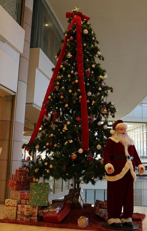 クリスマスツリー 29 12 25