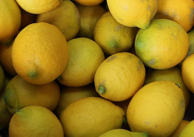 レモン戴き 29 12 20