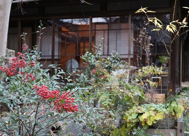 海友荘入口ナンテンの実 29 12 9