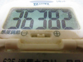 171007-291歩数計(S)