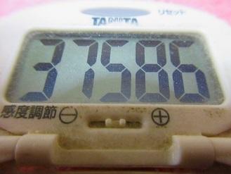 171111-291歩数計(S)