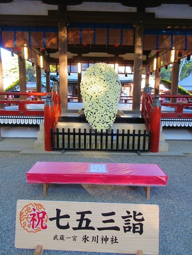 171112-202武蔵菊花会奉納展示(S)