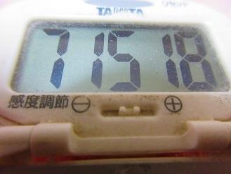 171112-291歩数計(S)