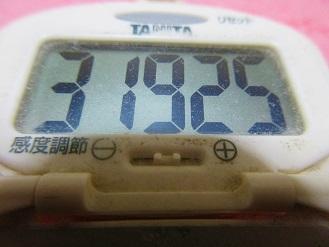171118-291歩数計(S)