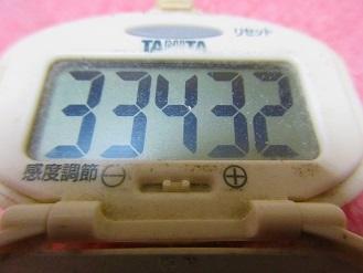 171123-291歩数計(S)
