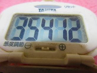 171125-291歩数計(S)