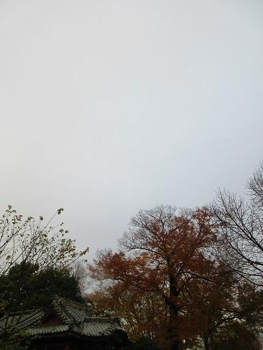 171201-201空(S)