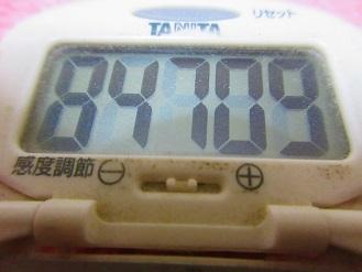 171205-291歩数計(S)