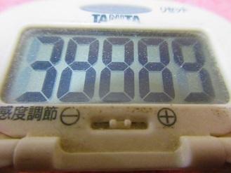 171209-291歩数計(S)