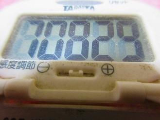 171217-291歩数計(S)