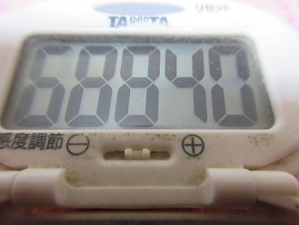 171224-291歩数計(S)