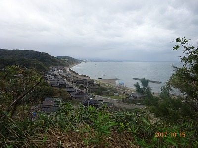kashiwazaki_021.jpg
