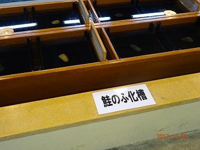 murakami_005.jpg
