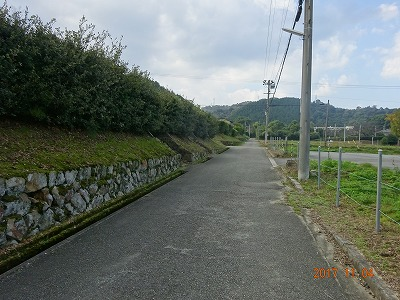 niihama_069.jpg