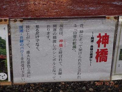 nikkou_c_009.jpg