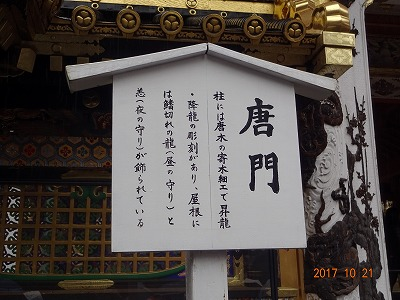 nikkou_c_029.jpg