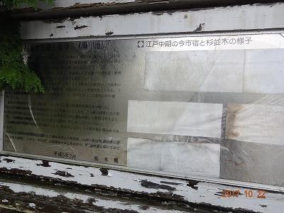 nikkou_c_087.jpg