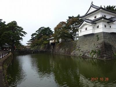 shibata_007.jpg