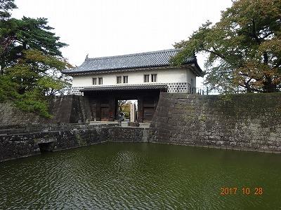 shibata_008.jpg