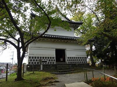 shibata_016.jpg