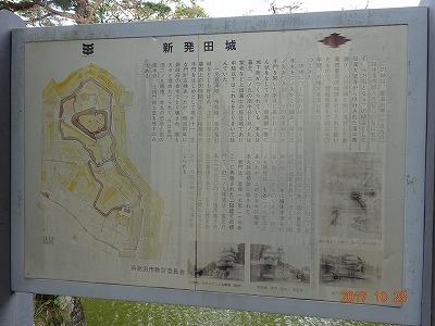 shibata_018.jpg