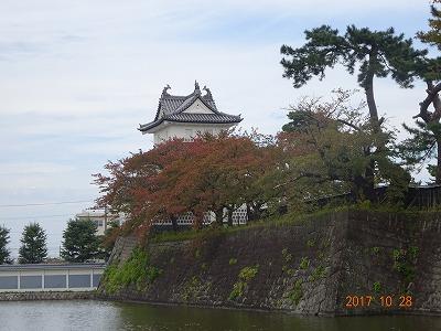 shibata_020.jpg