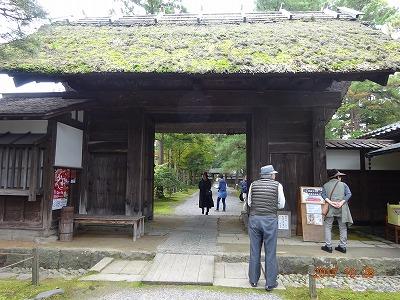 shibata_036.jpg