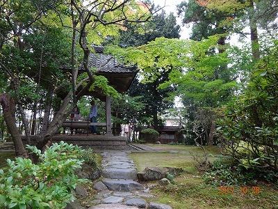 shibata_041.jpg