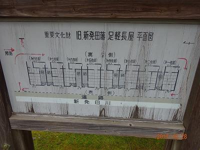 shibata_043.jpg