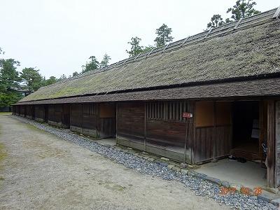 shibata_044.jpg