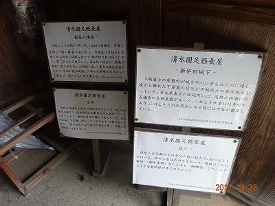 shibata_045.jpg