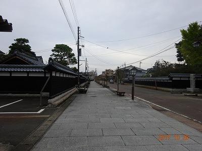 shibata_049.jpg