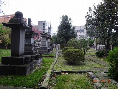shibata_067.jpg