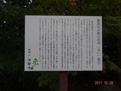 shibata_072.jpg