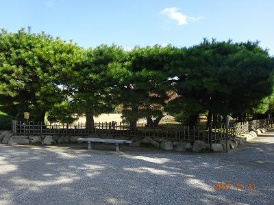 takamatsu_021.jpg