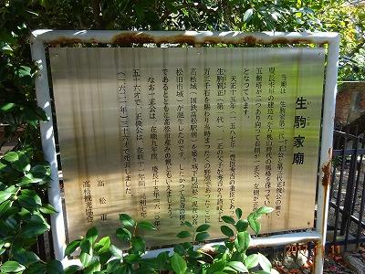 takamatsu_025.jpg