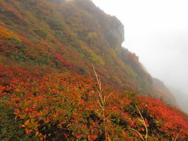 IMG2519JPG山頂下の紅葉