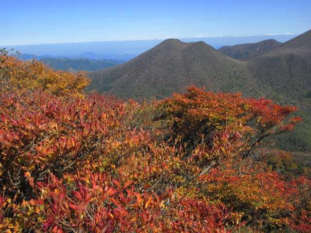 IMG2615JPG紅葉と平治岳