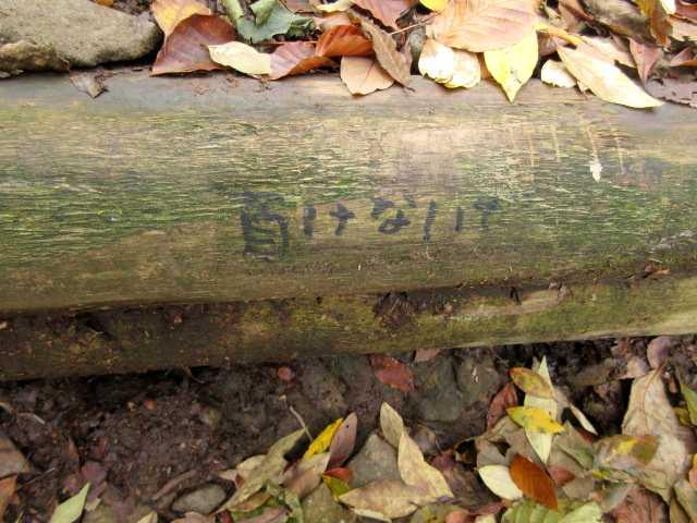 IMG2757JPG木段のエール