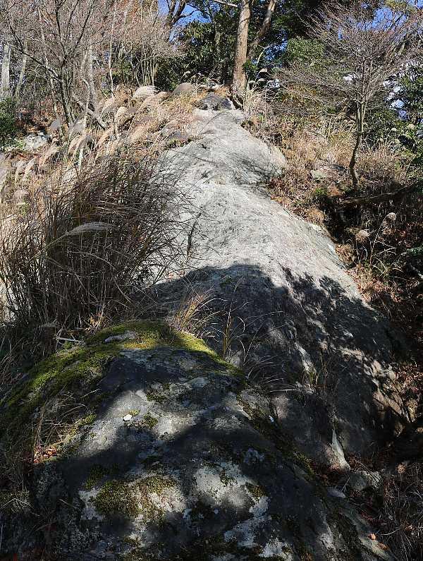 IMG5448JPG岩稜歩き