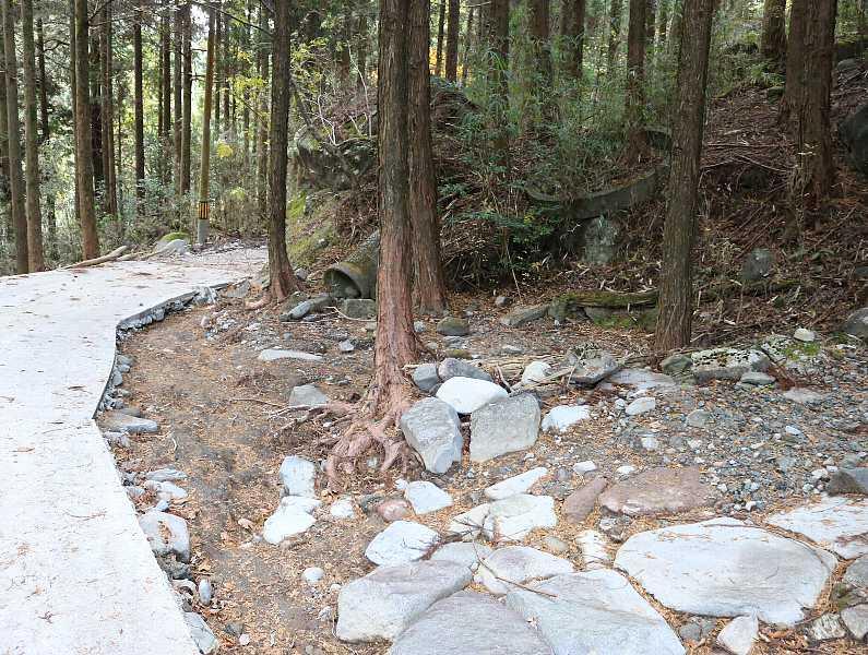 IMG5497JPG玉屋神社入り口の崩壊地