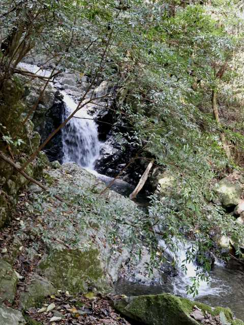 IMG5681JPG四の滝