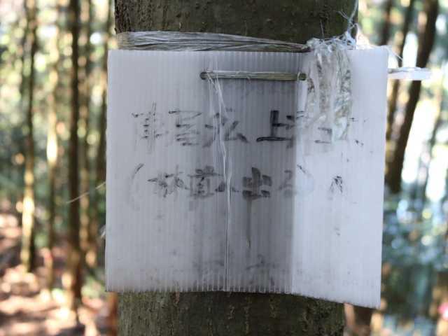 IMG6121JPG陣屋ダム上林道コース