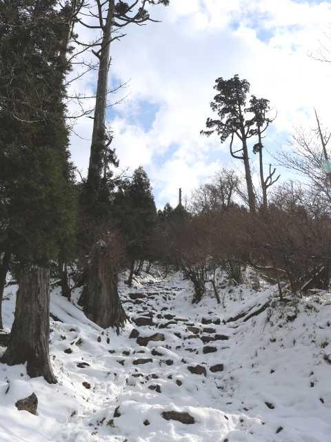 IMG6210JPG参道の積雪