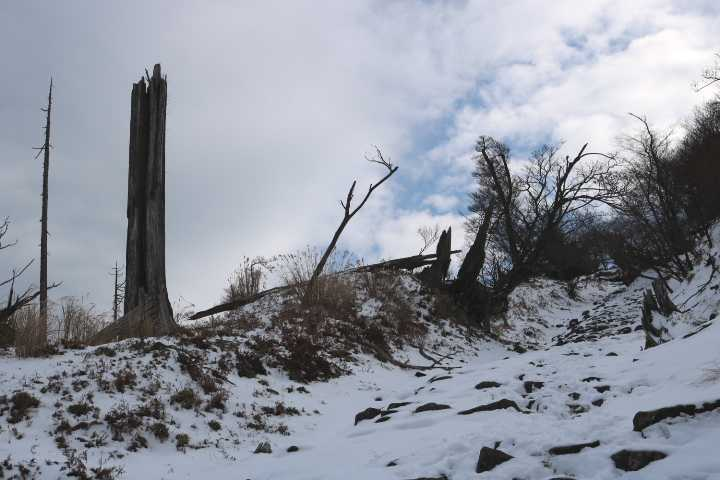 IMG6214JPG雪景1