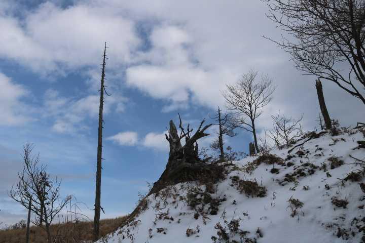 IMG6216JPG雪景色2