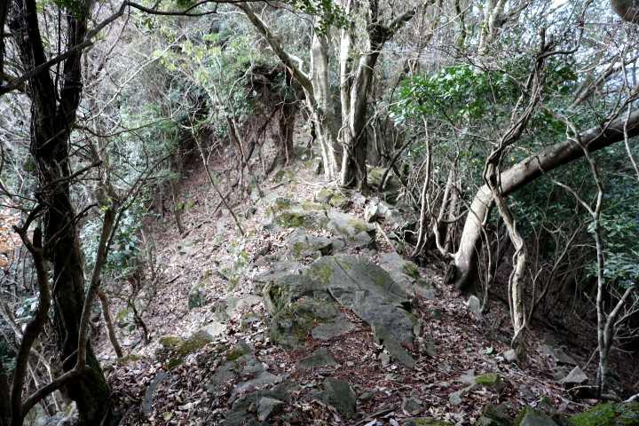 IMG6297JPG岩稜歩き