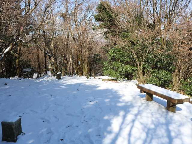 IMG6405JPG初冬の日差し