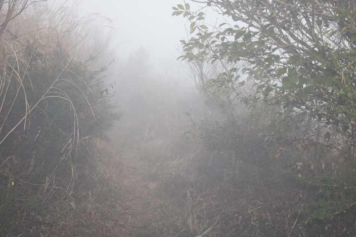 IMG6465JPG濃霧の縦走路