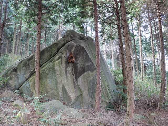 IMG6541JPG突如現れる大岩スズメバチの巣